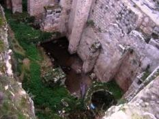 The excavated foundations, showing a pool still in existence.