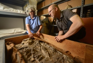 Researchers at Penn Museum analyzing the 6,500 year old skeleton.