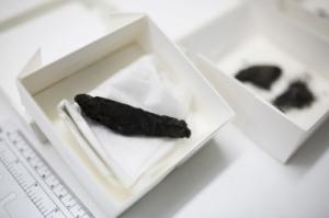 Oldest bible scrolls since Dead Sea Scrolls, found in Israel.
